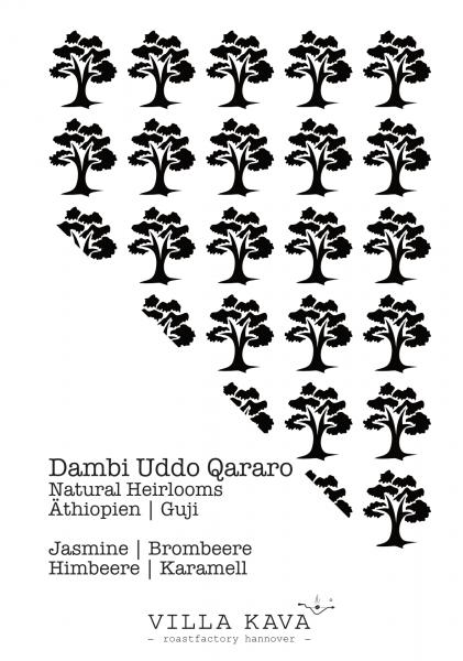 Dambi Uddo Qararo - Äthiopien 200g